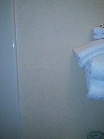 Baymont Inn & Suites Waycross: Peeling paint behind toilet