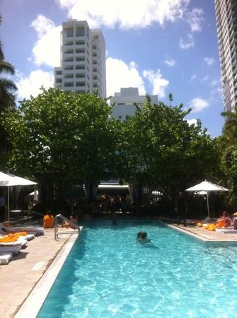 skybar at the shore club miami beach fl updated 2017. Black Bedroom Furniture Sets. Home Design Ideas