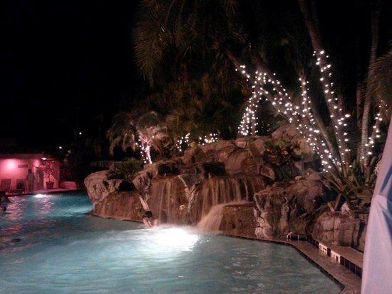 International Palms Resort & Conference Center: Pool at night