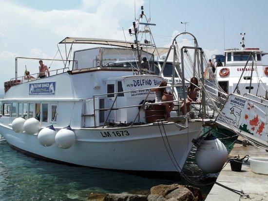 Palau, إيطاليا: Barca Delfino Bianco