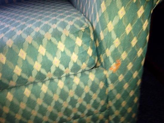 Super 8 Harrington: crud on sofa