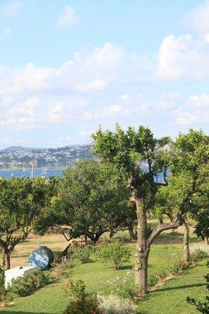 Hotel'a Sciulia: backyard garden