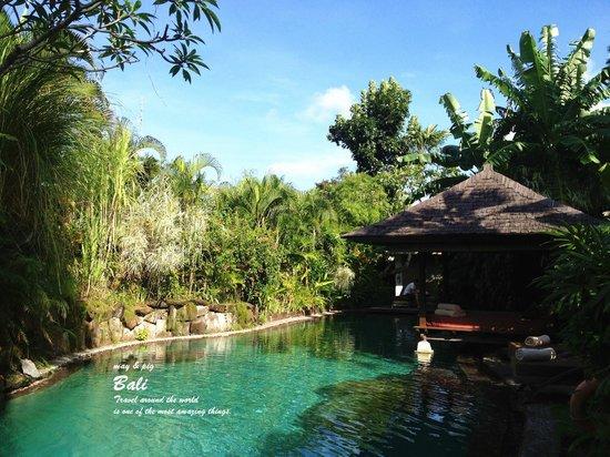 Jamahal Private Resort & Spa: プール