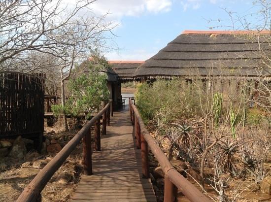 Camp Shawu: Lobby hut