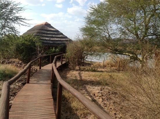 Camp Shawu: Outside view of bush hut