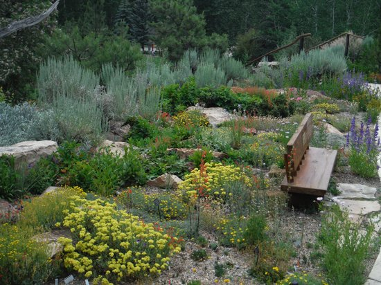betty ford alpine gardens garden view. Cars Review. Best American Auto & Cars Review