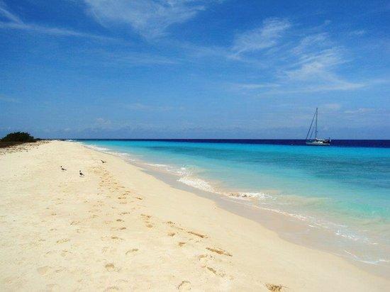 Klein (Little) Curacao: Praia da ilha