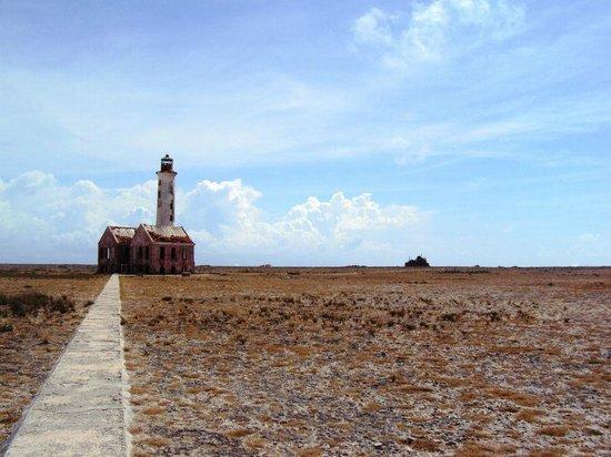 Klein (Little) Curacao: Vista do antigo farol desativado e dos navios encalhados