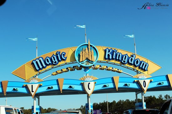 The Magic Kingdom  Picture Of Walt Disney World Orlando  TripAdvisor