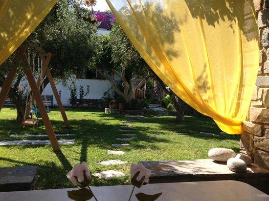 Pension Sofia : Le jardin