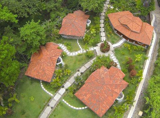 Playa Cielo: Gardens