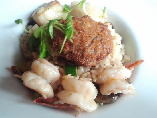 Overlander Mountain Lodge: Crab cake with scallops and shrimp over risotto.