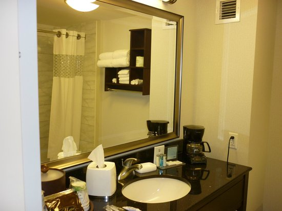 Hampton Inn by Hilton Toronto Airport Corporate Centre: lavabo