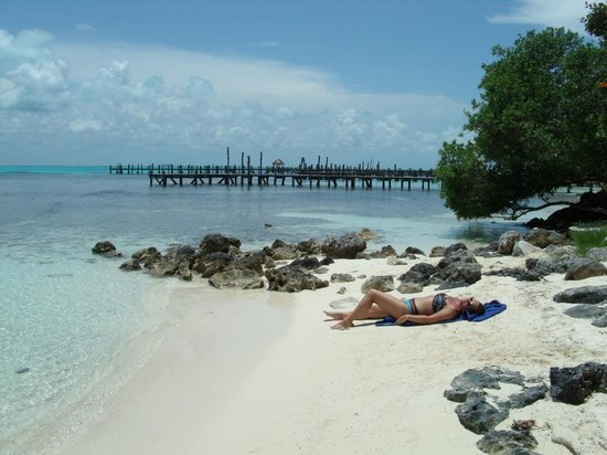 Hotel La Joya: Beach
