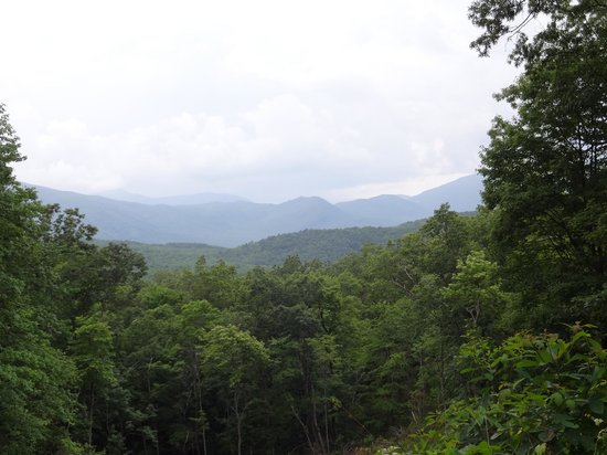 Whisperwood Farm B&B, Creekwalk Inn and Honeymoon Cabins: Stunning view!