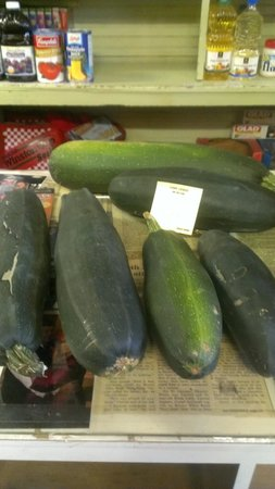 Carriss's Grocery : Zucchini for free