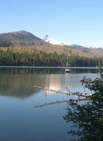 The Lodge at Suttle Lake: View from the 3.8 mi hiking trail around Suttle Lake