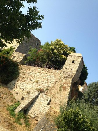 Le Jardin de l'Echauguette: echanguette