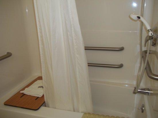 Microtel Inn & Suites by Wyndham Plattsburgh: salle de bain pour handicapé