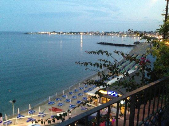 Hotel Palladio: panorama