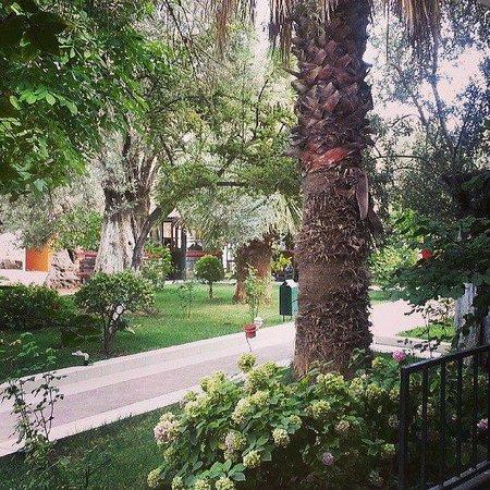 Club Hotel Gultur: B blok oda balkonu manzarası