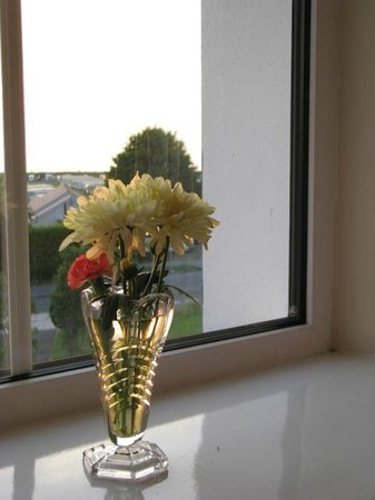 Carno House: Town View room.  Always lots of fresh flowers about.