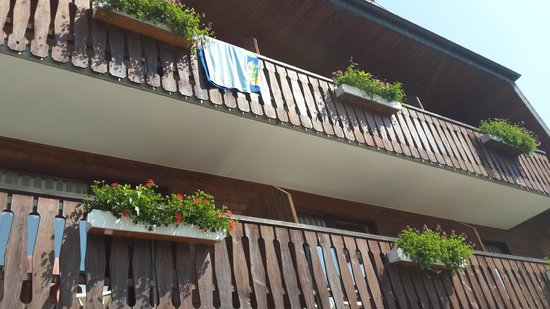 Neubierhausle: The front rooms terraces