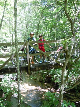 Big South Fork National River & Recreation Area : A bridge for the John Muir/Sheltowee Trace.