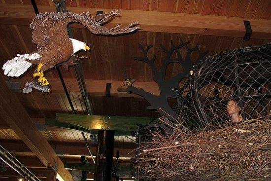 Hands On Children's Museum: Eagles Nest Exhibit