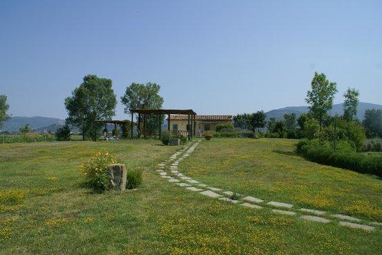 Cortona Resort - Le Terre dei Cavalieri : vue de piscine