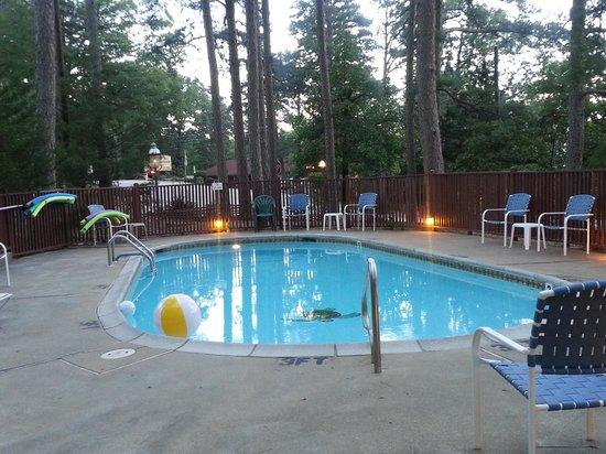 Tall Pines Inn : pool oasis