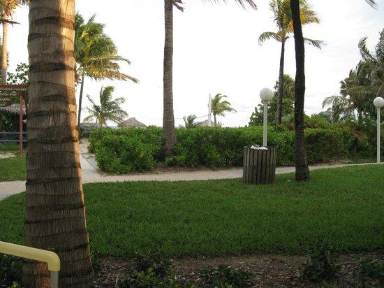 Taino Beach Resort & Clubs: Grounds