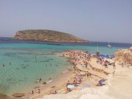 Cala Compte - Picture of Cala Comte, Ibiza Town - TripAdvisor