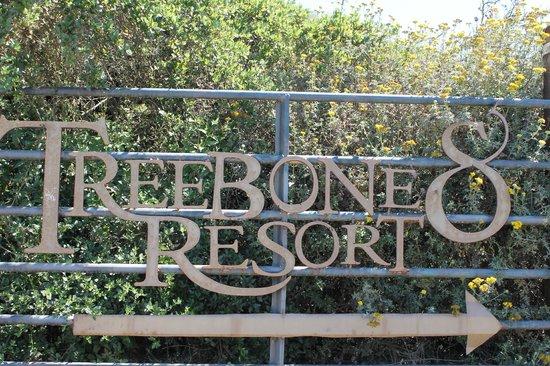 Treebones Resort: The Entry Sign