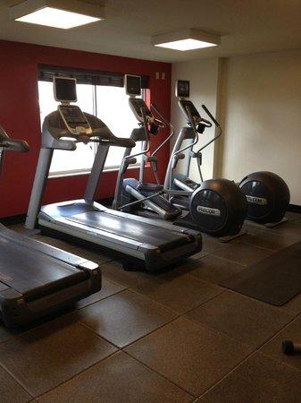 Hilton Garden Inn New Orleans Convention Center: Gym