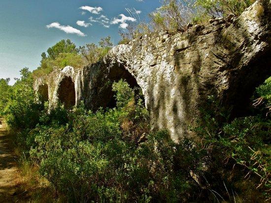 Maison de Martin : walk to the Pont du Gard - ruins of the aqueduct
