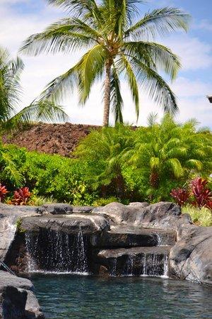 Palm Villas at Mauna Lani : Palm Villas Waterfall Pool