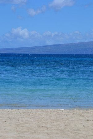Palm Villas at Mauna Lani : Mauna Lani Beach Club