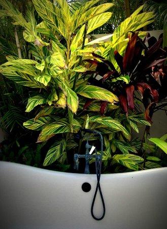 Jumby Bay, A Rosewood Resort: Outdoor Soaking Tub