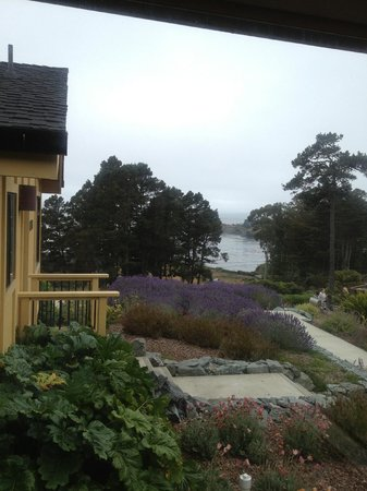 Cottages at Little River Cove: View from Caspar Cottage