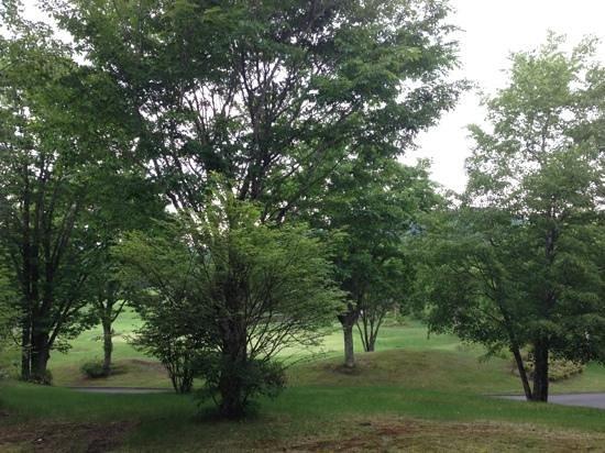 President Resort Karuizawa: お部屋からの景色