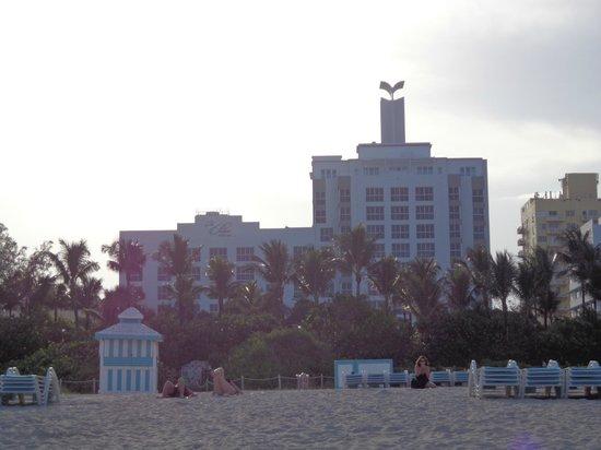 The Palms Hotel & Spa: Vista da praia