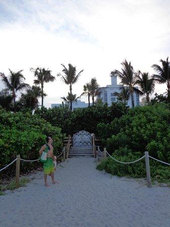 The Palms Hotel & Spa: Vista do hotel da praia