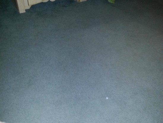 Condos & Hotel Stoneham : le tapis