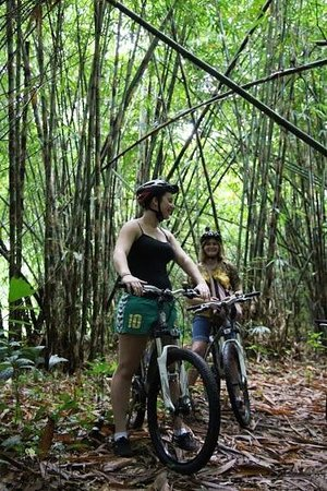 Bali Hai Bike Tours: bamboo forest, Bai Hai cycle ride,Bali