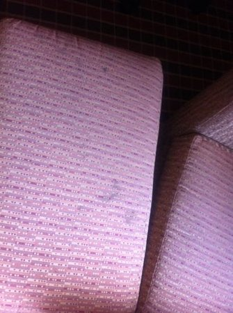 La Quinta Inn & Suites Pittsburgh North: stains on all of the fabrics. furniture, sheets, and curtains