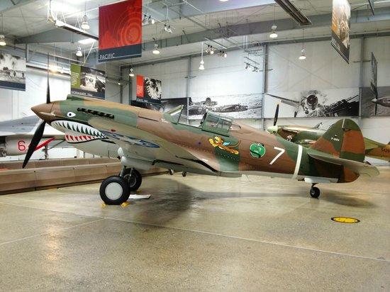 Flying Heritage & Combat Armor Museum : P-40