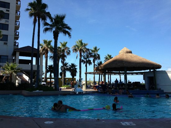 Pearl South Padre: The beautiful pool an swim bar
