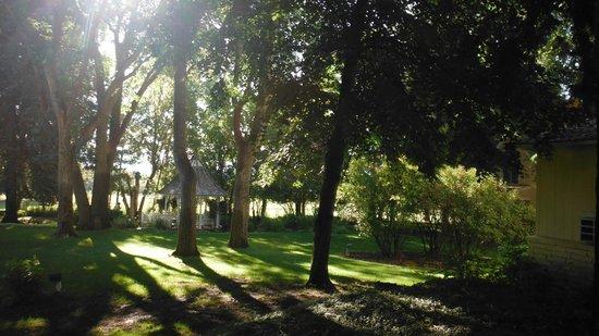 Homestead Resort : View from front door of cottage