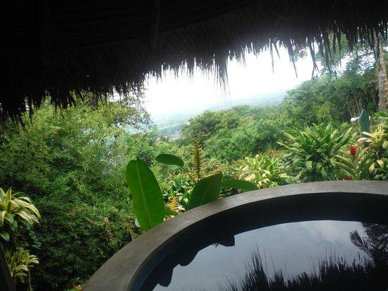 Xandari Resort & Spa: View from spa